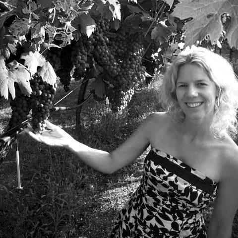 Vino Italiano - Andrea Volders